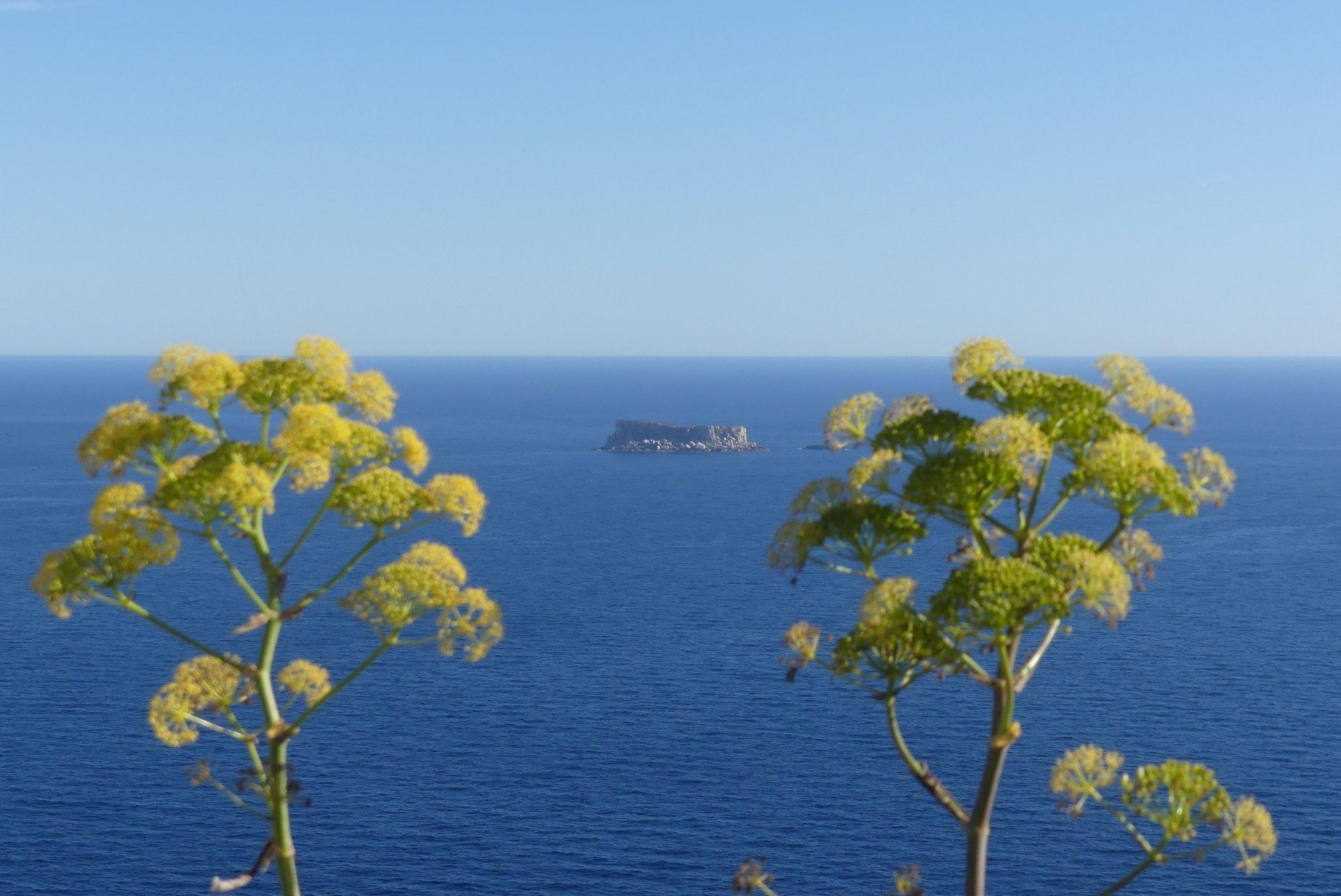 Blick von den Dingli Cliffs auf das Meer Malta