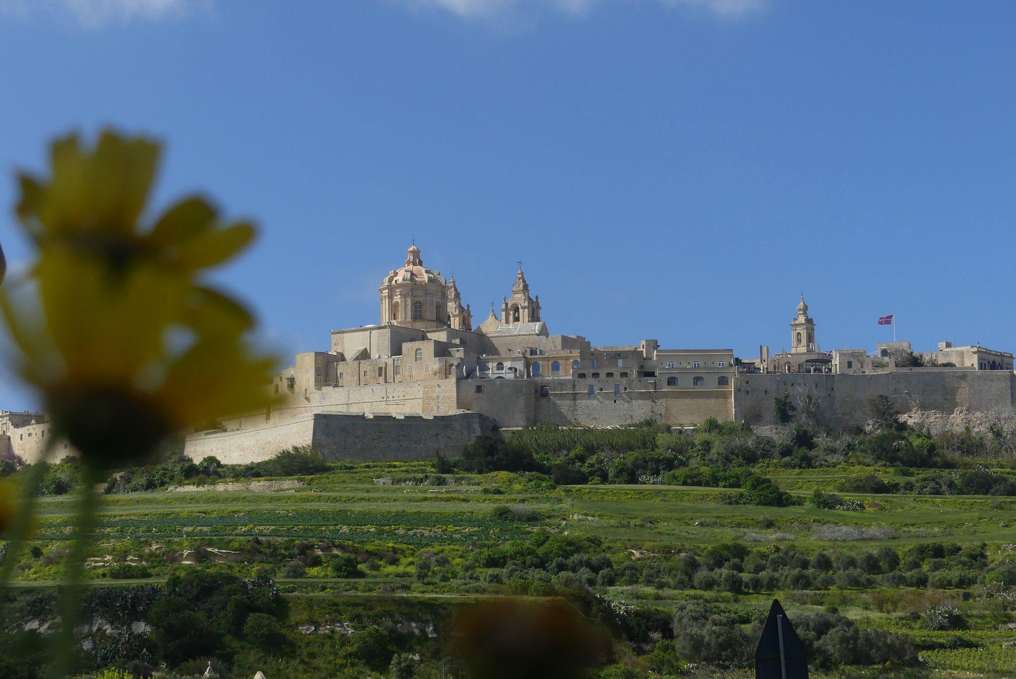 Blick auf Mdina Malta