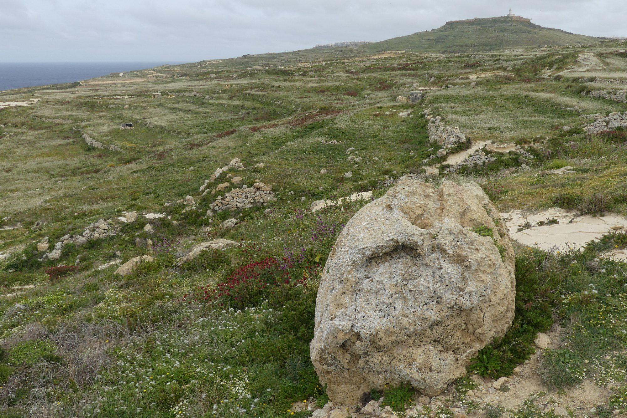 Unterwegs an der Küste von Gozo Malta