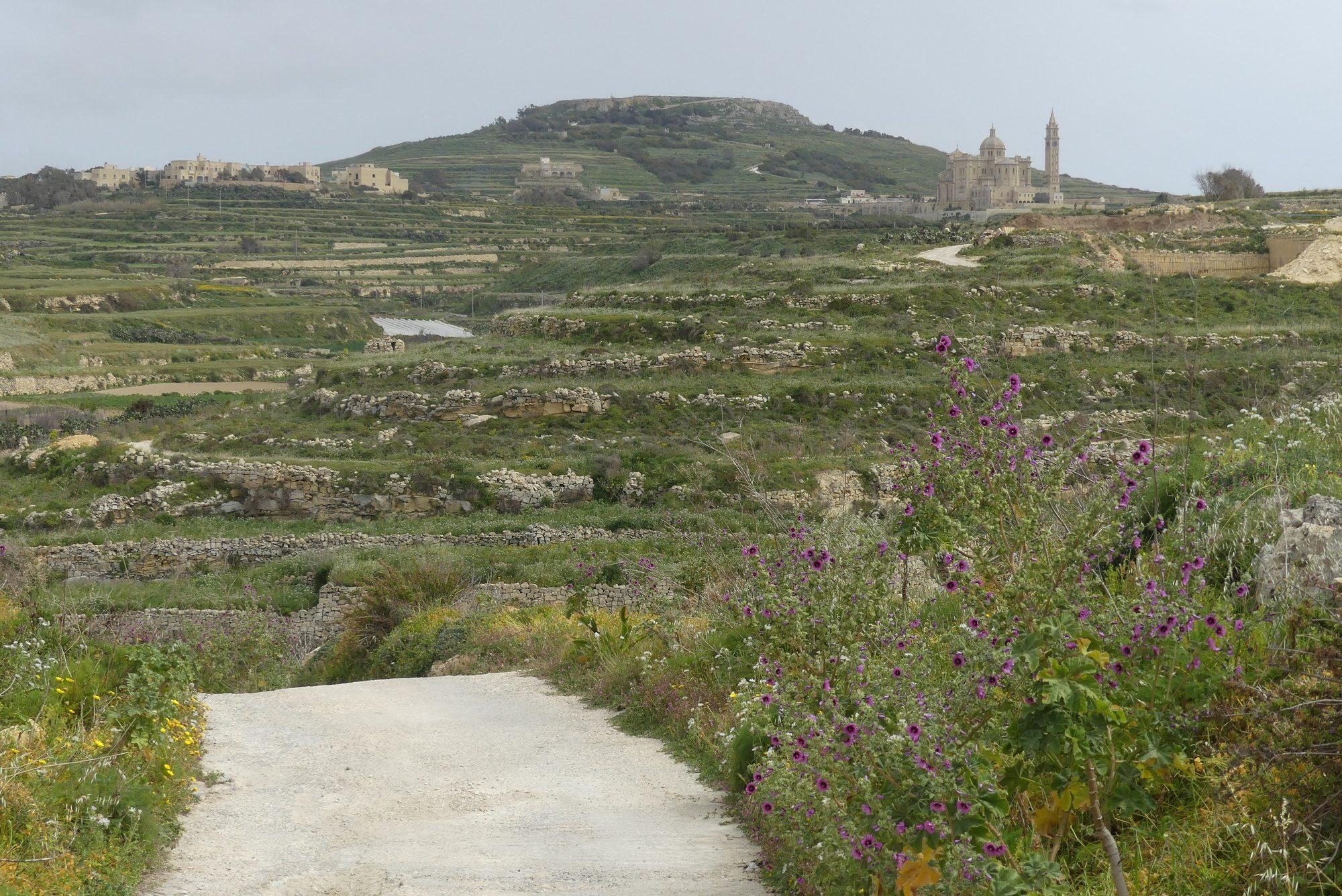Spaziergang in der Nähe von Gharb auf Gozo Malta