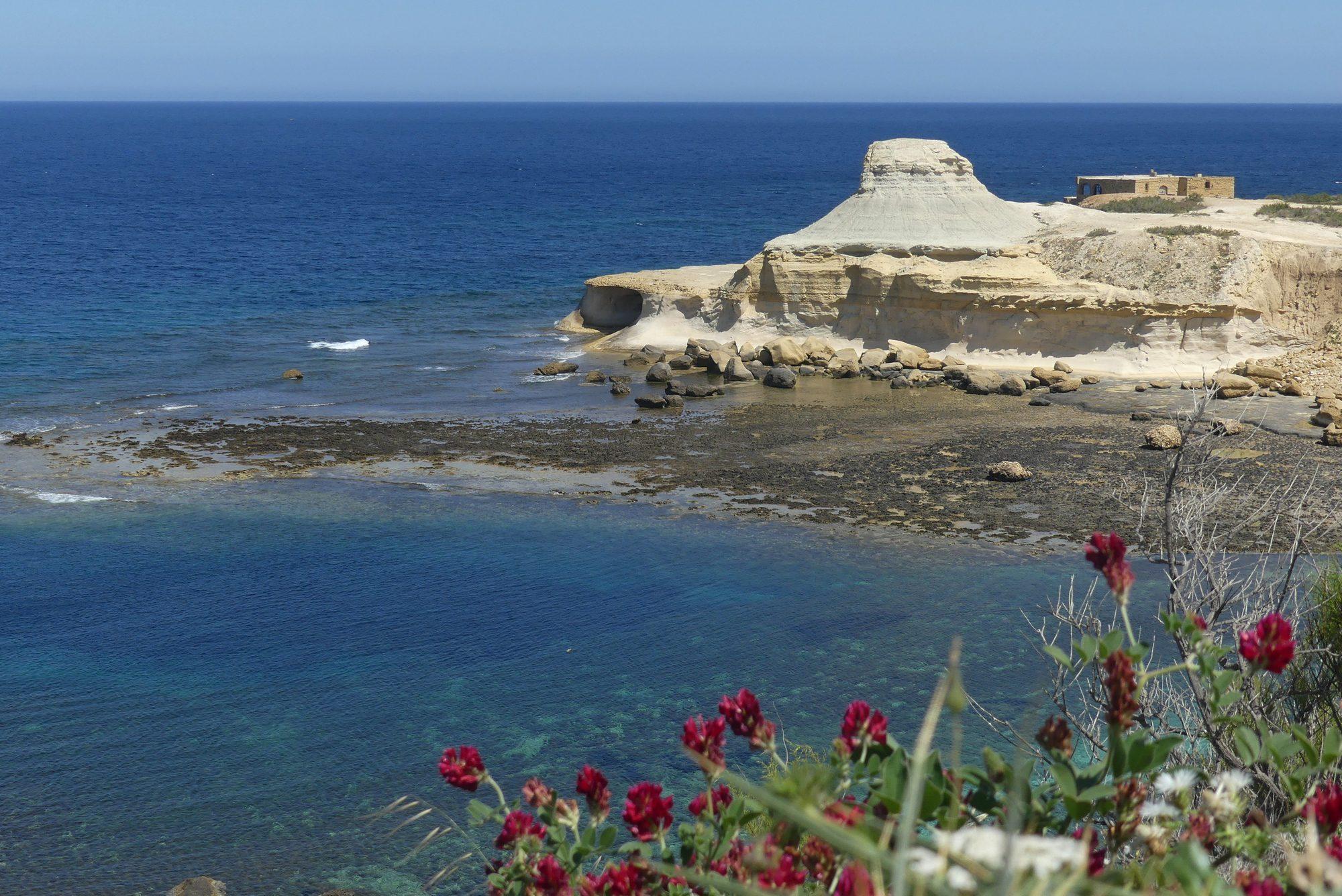 Bei den Salinas an der Küste Gozos Malta