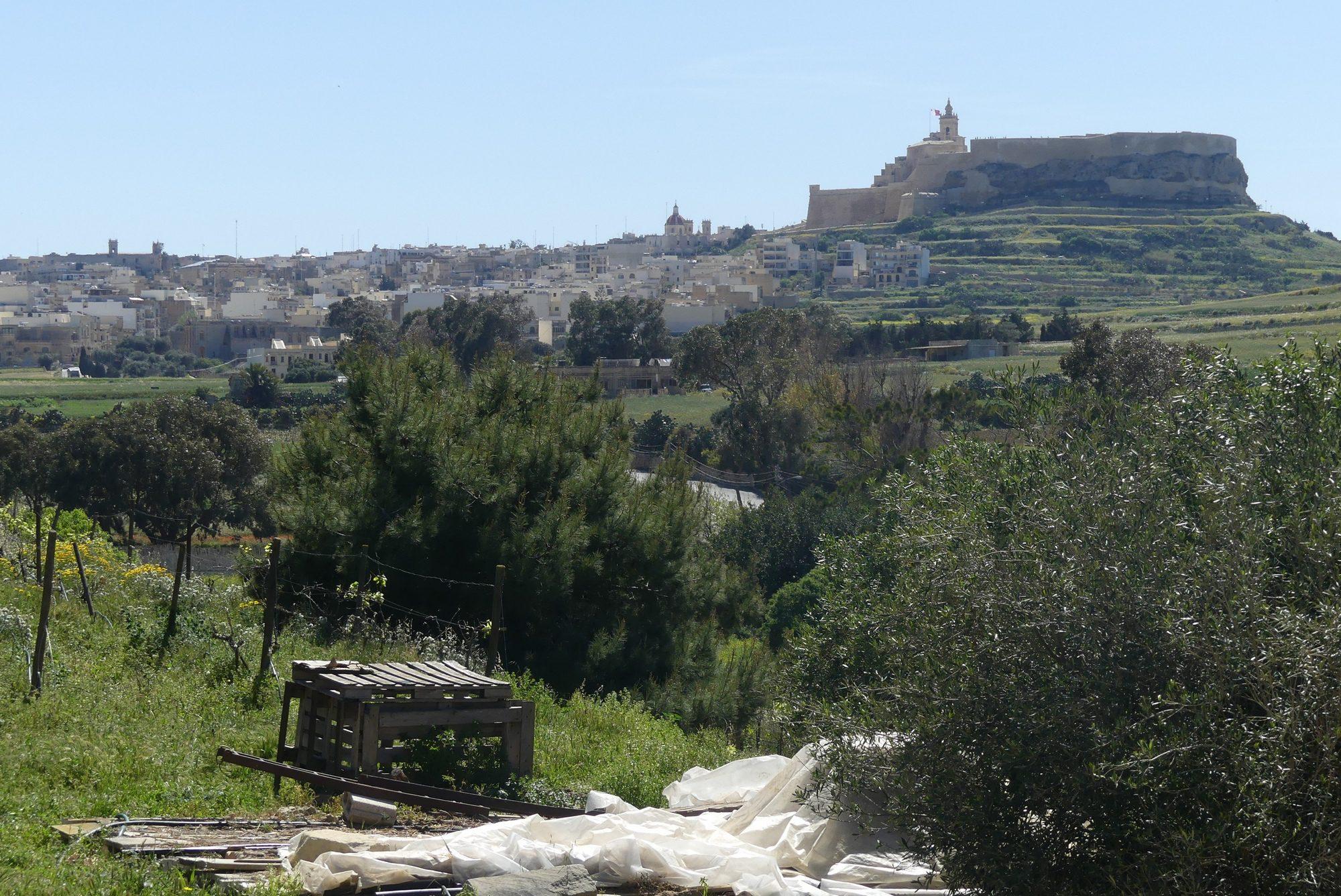 Blick auf Victoria vom Weingut Ta Mena Estate auf Gozo Malta