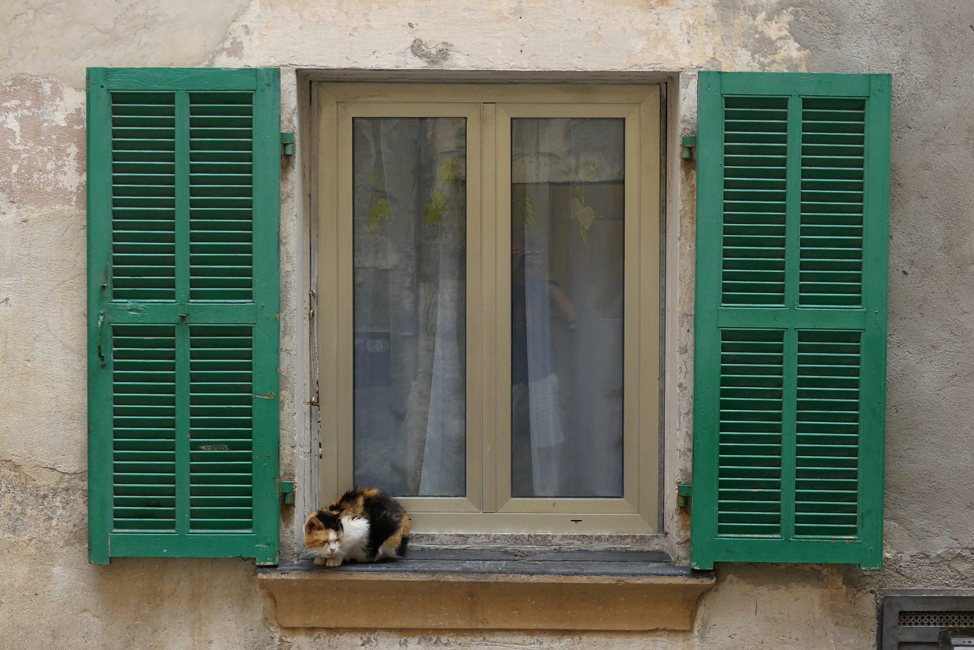 Fenster mit Katze in der Altstadt von Ventimiglia Italien