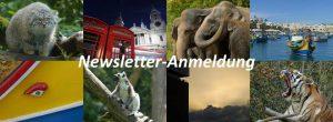 Beitragsbild Newsletter-Anmeldung