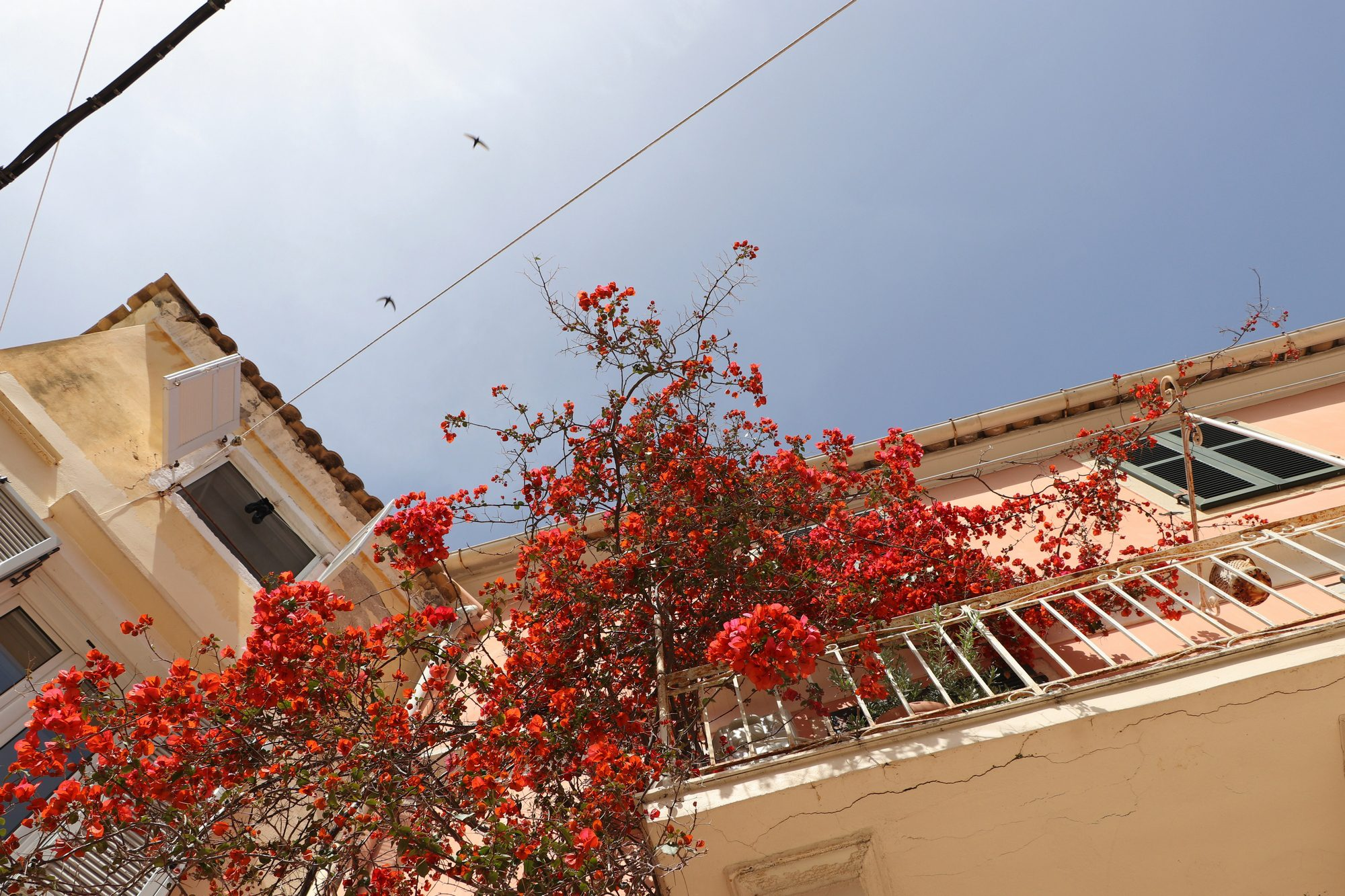Die Altstadt von Korfu Stadt