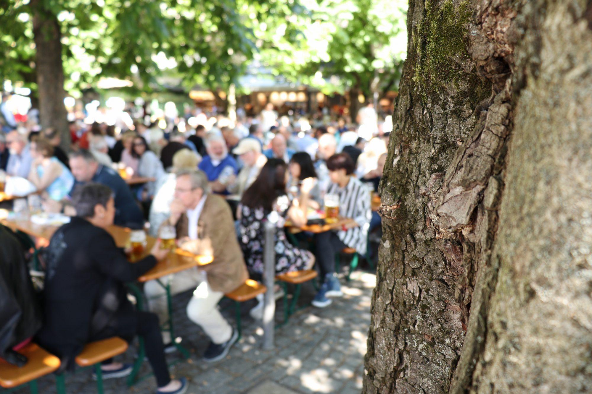 Der Biergarten im Viktualienmarkt in München