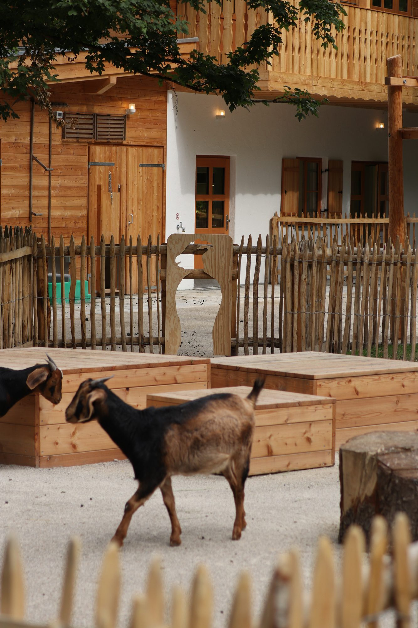 Ziegengehege im neuen Mühlendorf im Tierpark Hellabrunn
