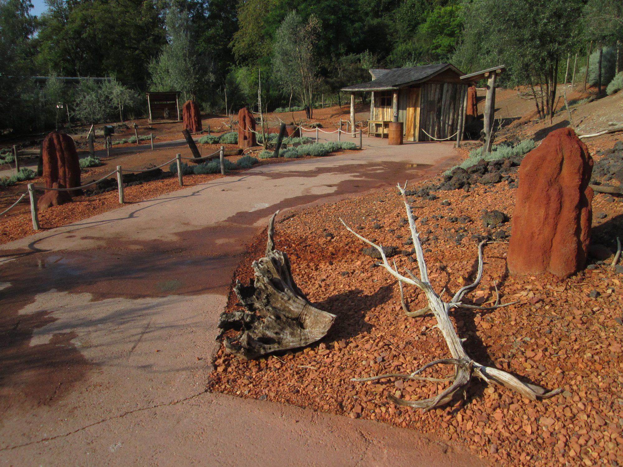Begehbares Australiengehege Emu und Känguru Zoo Zürich