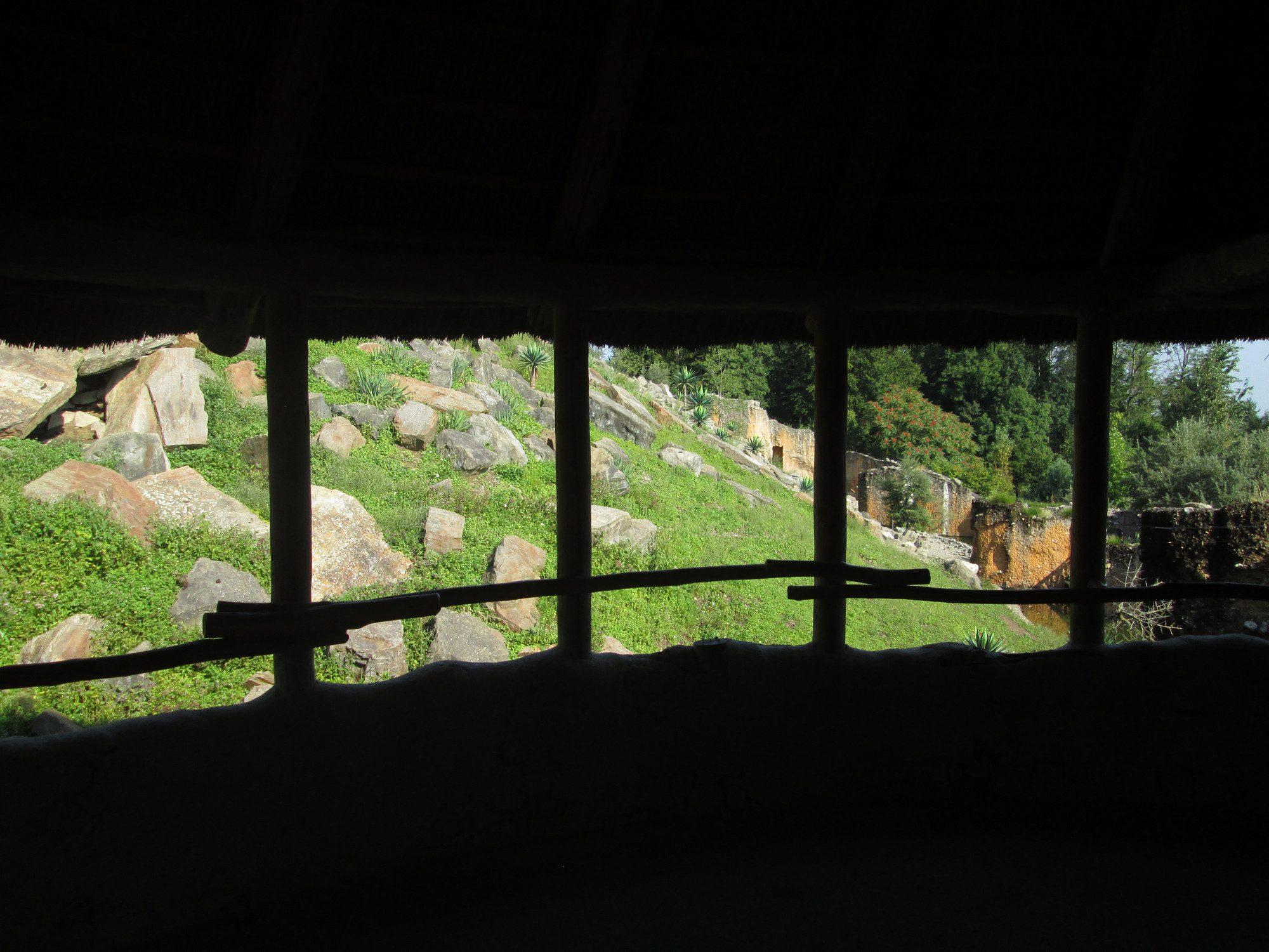 Afrikanisches Gebirge für Dscheladas Zoo Zürich
