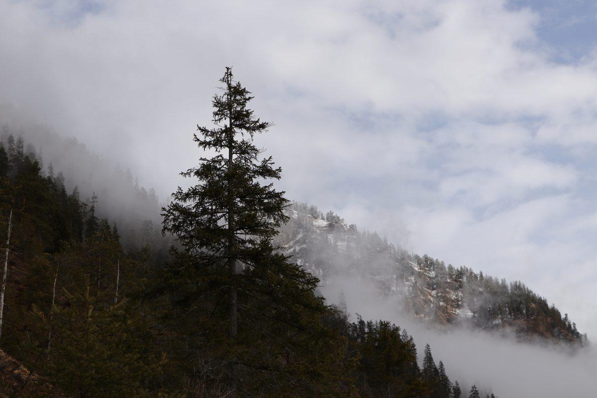 Wolkenverhangene Berge Entlang der Isar bei Vorderriss