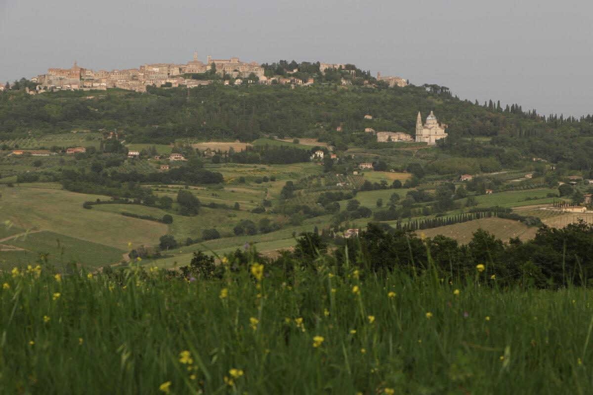Blick auf die Altstadt von Montepulciano in der Toskana