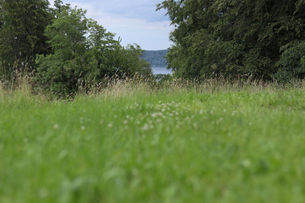Ausblick auf den See in Bernried am Starnberger See
