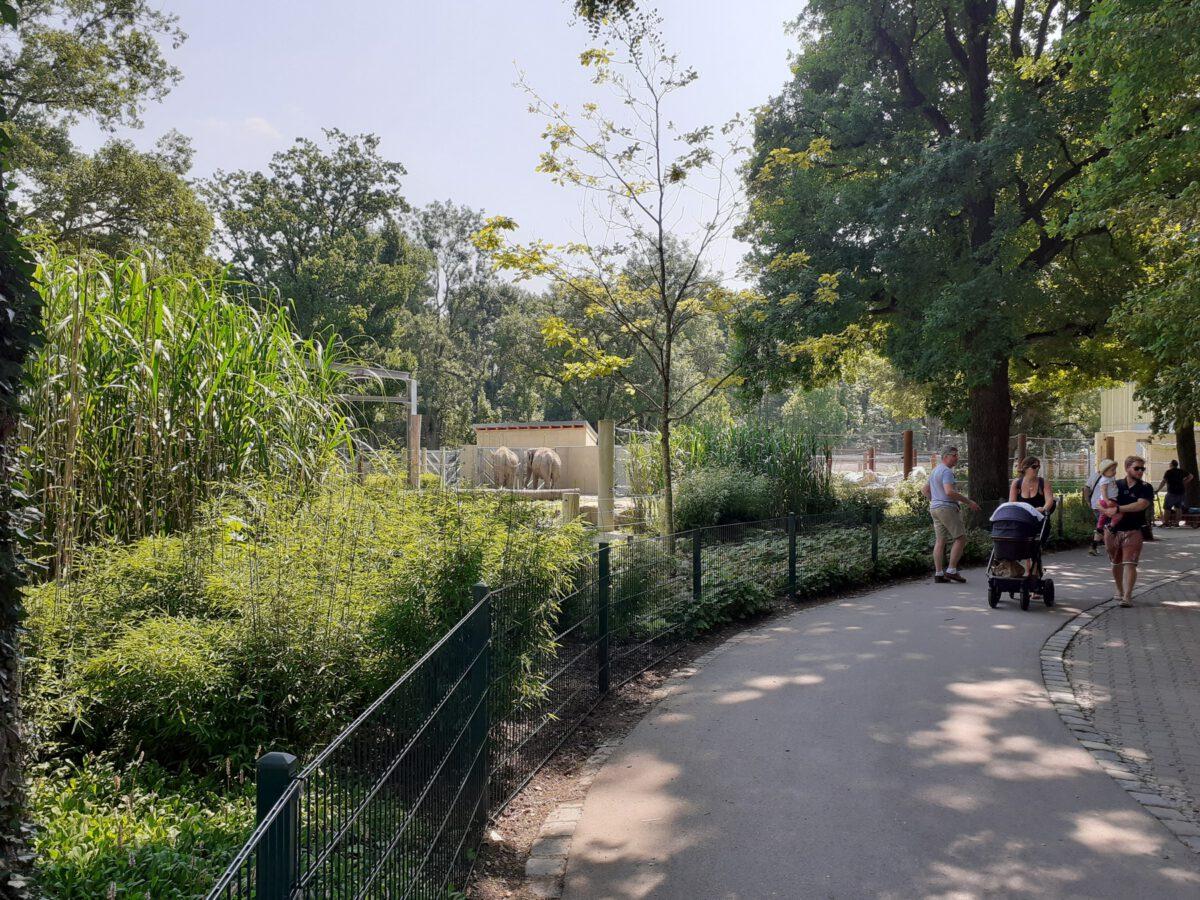 Besucherweg entlang der neuen Elefanten-Anlage im Zoo Augsburg
