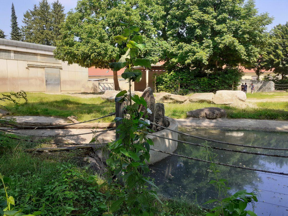 Altes Elefanten-Gehege im Zoo Augsburg