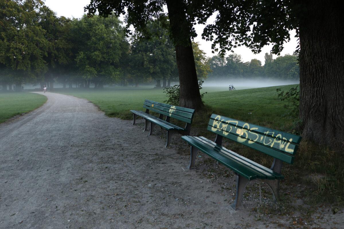 Morgens im Englischen Garten in München bei Nebel
