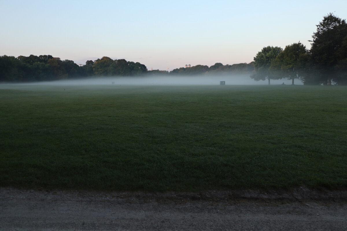 Frühmorgens im Englischen Garten bei Nebel mit Blick auf München