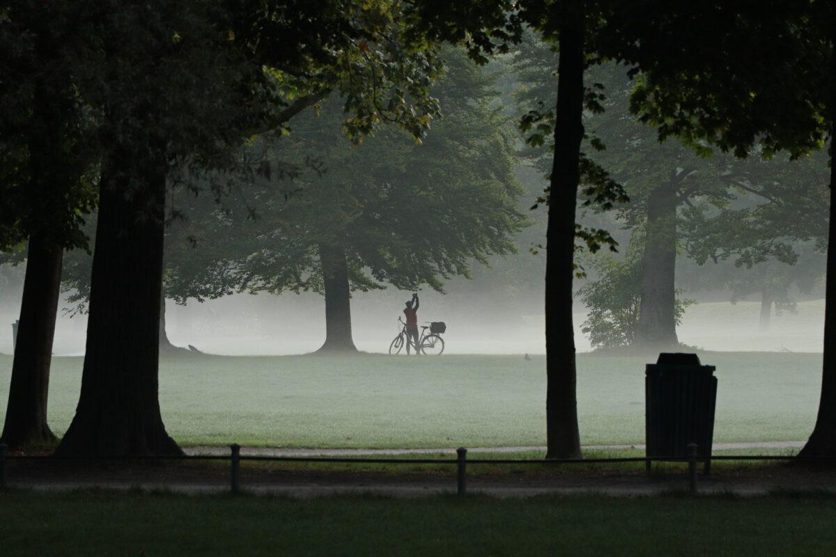 Nebelstimmung am frühen Morgen im Englischen Garten in München