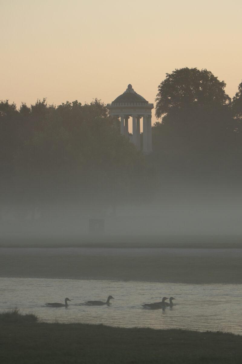 Der Monopteros im Englischen Garten in München bei Sonnenaufgang im Nebel